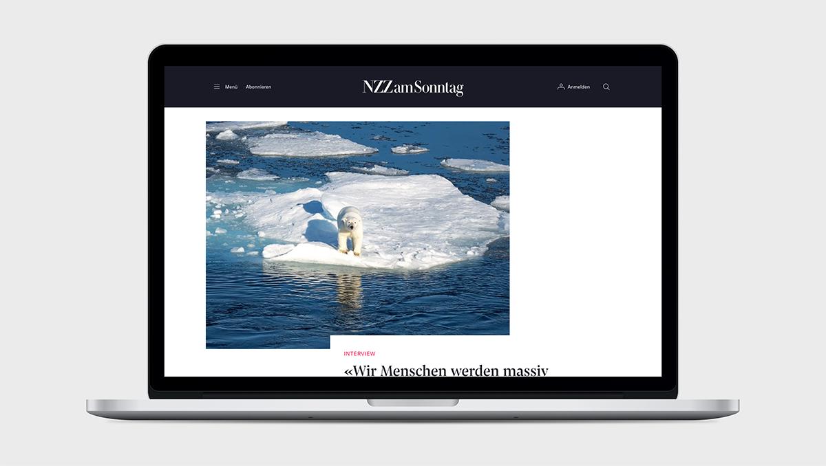 NZZaS-Desktop