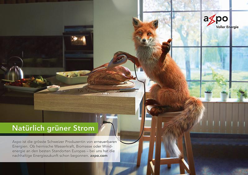 Axpo_Kampagne-Gruener-Strom_Fox_Juni-2017