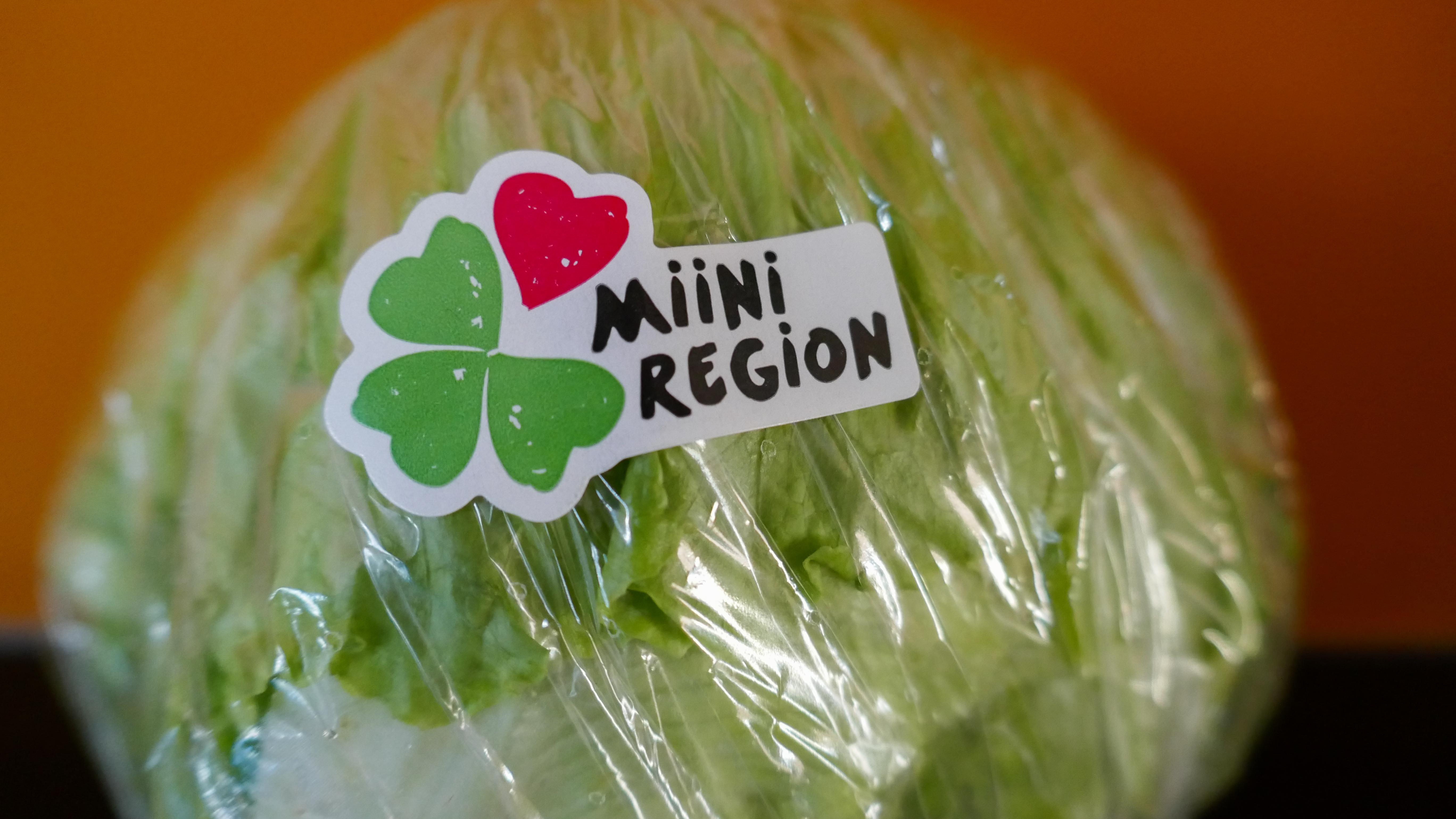 D07_Birki Miini Region mit Salat-1010395